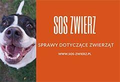 SOS Zwierz Sprawy dotyczące zwierząt